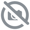 Garmin edge 830 ( ou bundle )